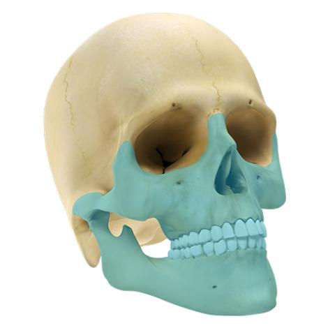 Maxilo Facial GII 2.0 - Sistema de Mini Placas