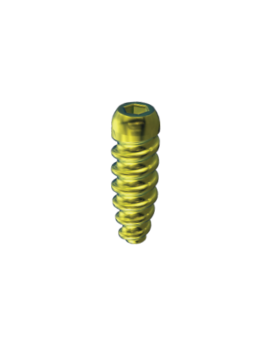 Interference Screw - Titanium