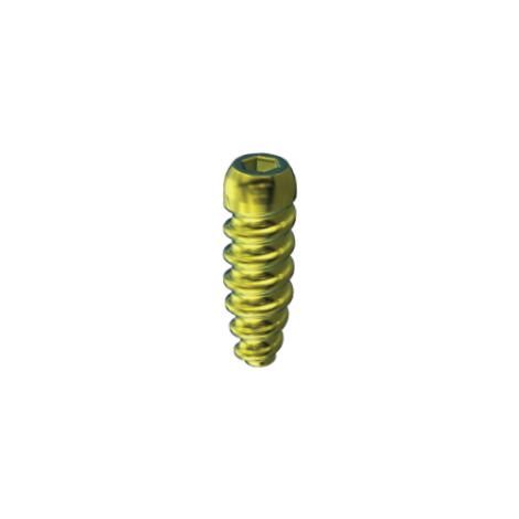 Interference Screw - Titanium